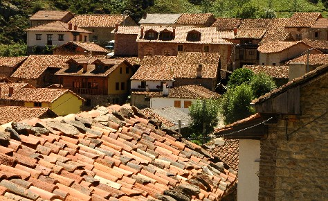 pan_tiled_roofs